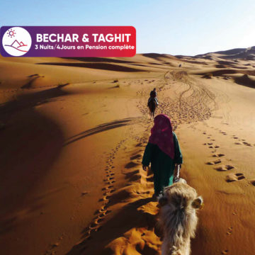 bechar-taghit--iuiui